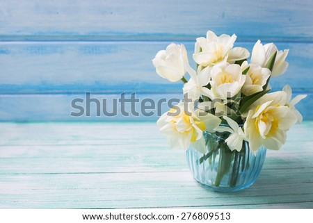 Bright white daffodils and tulips  flowers in blue vase on turquoise  painted wooden planks against blue wall. Selective focus. Place for text.   - stock photo