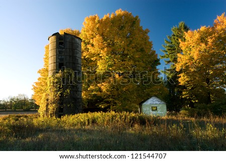 Brilliant fall-colored maples glow in the morning light at an abandoned farm site in Kalamazoo Co., Michigan - stock photo