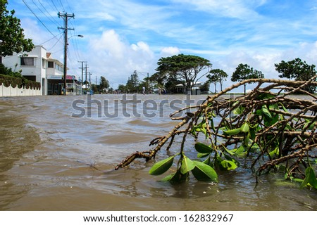 BRISBANE, QLD, AUSTRALIA - January 27: A broken branch left on the flooded street in Brisbane on 27 January 2013 - stock photo