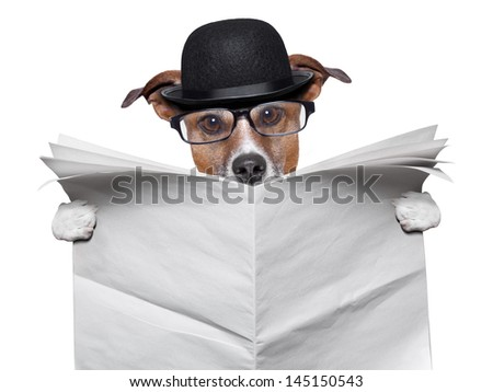 British dog reading a big blank newspaper - stock photo