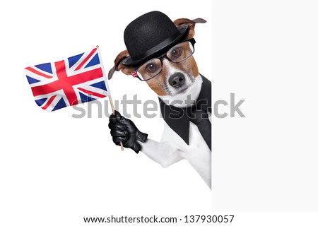 british dog with black bowler hat and black suit waving a flag - stock photo