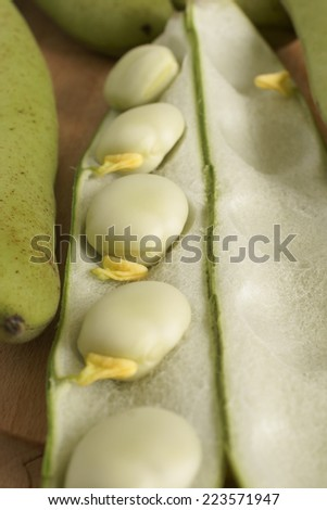 Broad beans or fava beans selective focus on centre bean - stock photo
