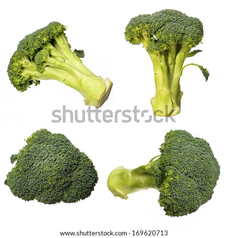 Broccoli Collection isolated on white. - stock photo