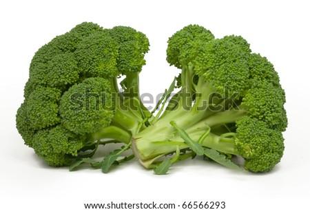 broccoli isolated on white - stock photo