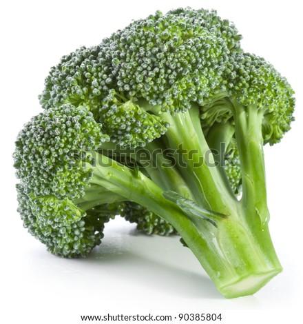 Broccoli on a white background. - stock photo