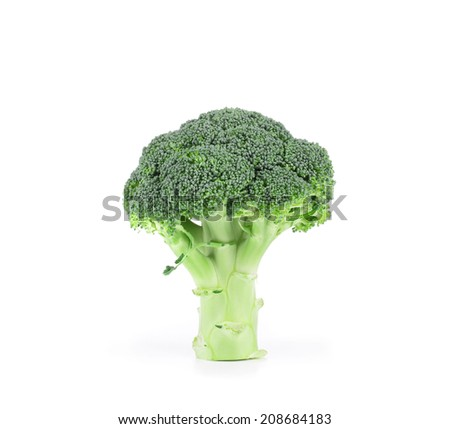 Broccoli vegetable close up. Isolated on a white background. - stock photo