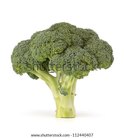 Broccoli vegetable isolated on white background - stock photo