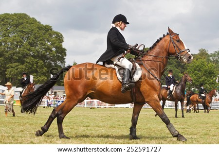 BROCKENHURST, UK - JULY 31: An unnamed rider competing in the  Inter Hunt cup approaches a fence at speed at the New Forest show on July 31, 2014 in Brockenhurst - stock photo