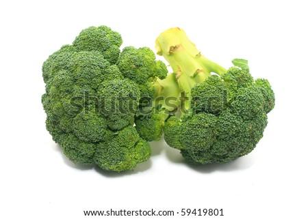 Brocolli isolated on white background - stock photo