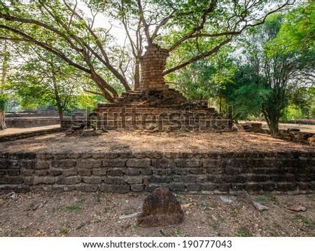 Broken ancient Buddha under a tree at Kamphaengphet Historical Park, Thailand - stock photo