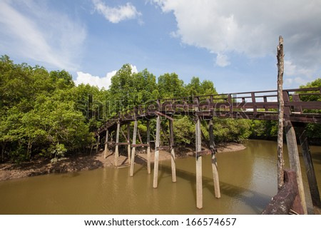 broken bridge in the mangrove forest,Ranong, Thailand - stock photo