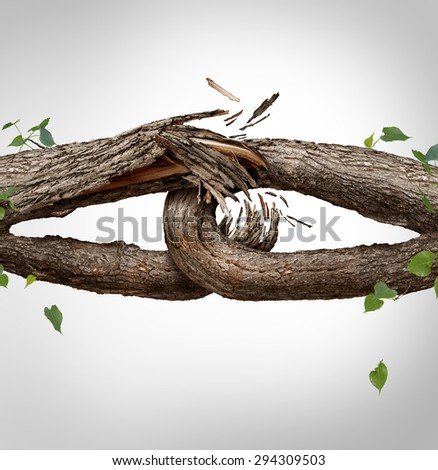 Broken chain concept and disconnected symbol as two different tree trunks tied and linked together as weak fragile,links breaking and losing trust or faith metaphor. - stock photo