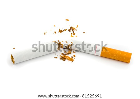 Broken cigarette isolated on white background - stock photo