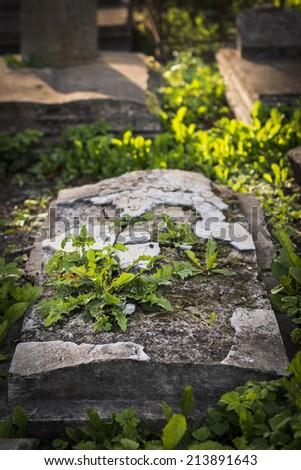 Broken gravestone at old jewish cemetery, Liepaja, Latvia. Selective focus. - stock photo