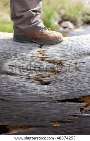Broken tree showing the human force, the subjugation of the nature, the danger of the overweight and many other concepts - stock photo