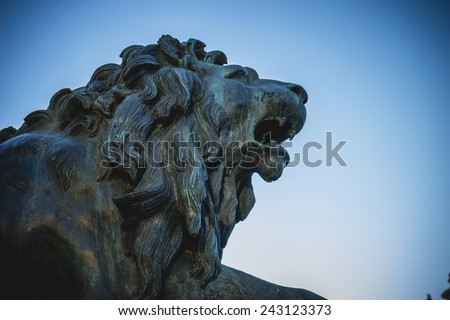 Bronze lion sculpture, oldest street in the capital of Spain, the city of Madrid - stock photo