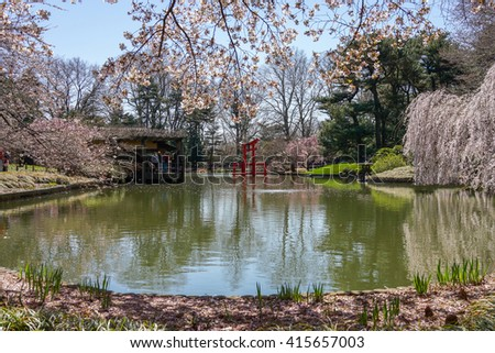 Brooklyn, New York - 14 April 2013: View of the Japanese Garden at Brooklyn Botanic Garden, New York City. - stock photo