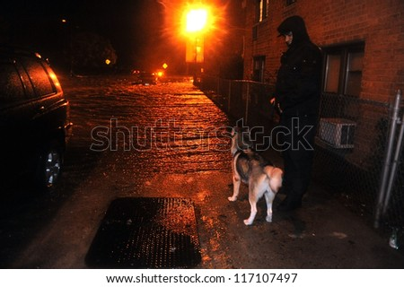 BROOKLYN, NY - OCTOBER 29:  Unknown man with dog watching flooded street, caused by Hurricane Sandy, are seen on October 29, 2012 in the corner of Brigham street and  Emmons Avenue of Brooklyn NY, US - stock photo