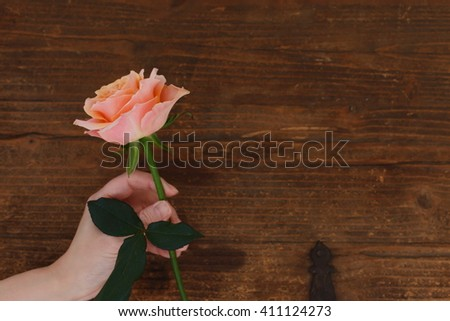 Brown background roses - stock photo