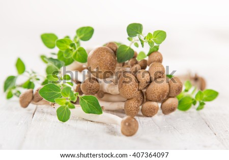 brown beech mushroom on white wooden background, close-up. - stock photo