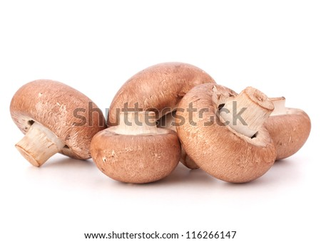 Brown champignon mushroom group isolated on white background cutout - stock photo