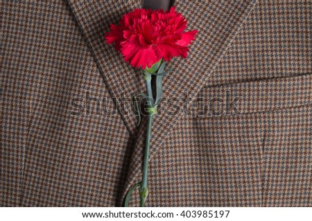 Brown classic tweed coat, with carnation on top. Fashion and lifestyles - stock photo