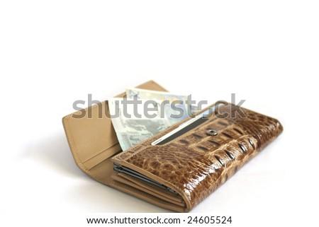 Brown croco  leather wallet with euros isolates on white - stock photo