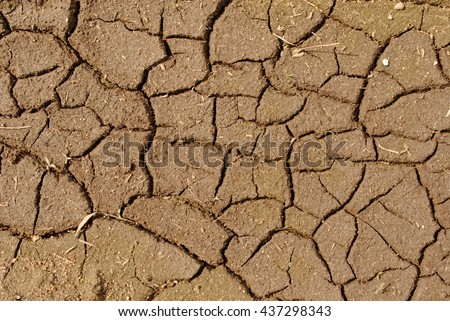 brown dry chapped soil as background - stock photo