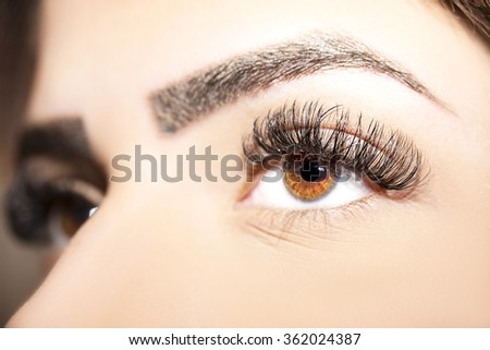 Brown Eye Makeup. Beautiful Eyes Make up detail, eyelash extension - stock photo