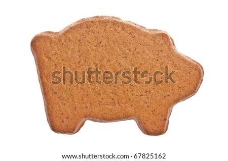 Brown ginger bread pig on white background. - stock photo