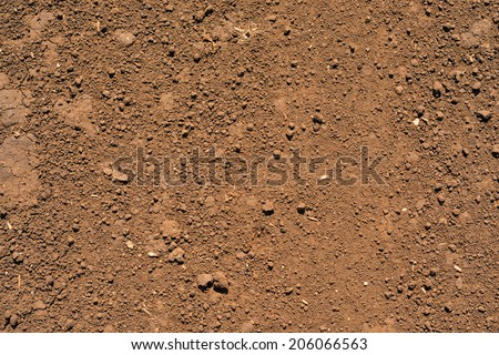 Brown ground surface. Close up natural background - stock photo