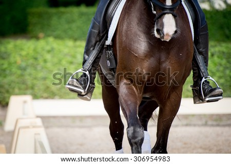 Brown horse in training with a close-up on the foot in the stirrups. Outside training with a white fence. - stock photo