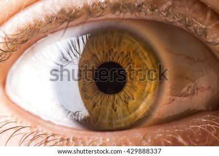 Brown-ish Eye - stock photo