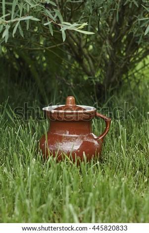 brown  jug near green tree on lawn close up - stock photo