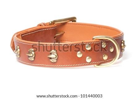 brown leather collar with rivets isolated over white background - stock photo