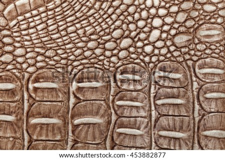 Brown leather texture background. Closeup photo. Reptile skin. The skin of a crocodile or a snake, - stock photo