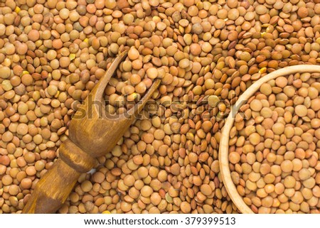 Brown lentils - stock photo
