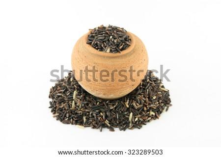 brown rice - stock photo