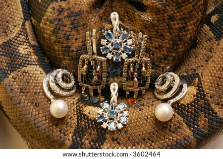 Brown snake with modern jewelrys 4 - stock photo
