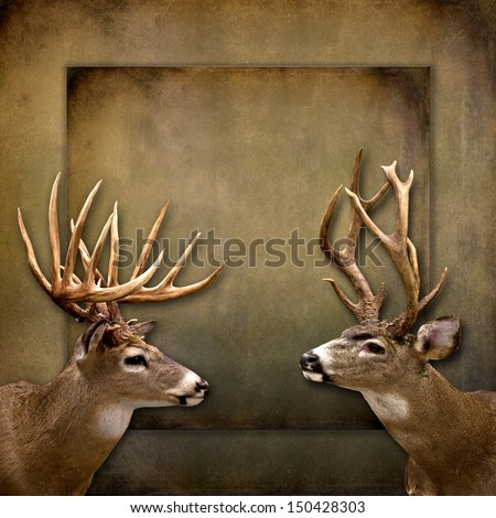 Brown textured Background with text area available - two buck/deer with large antlers - stock photo