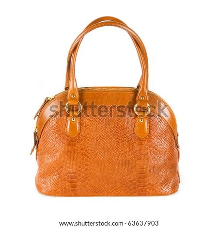 brown women bag, fashion of 2011 year isolated on white background - stock photo