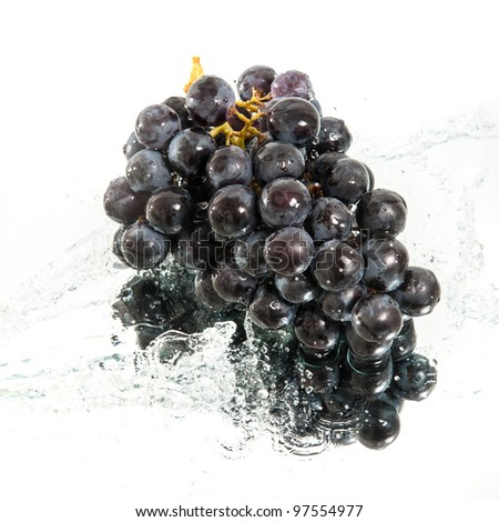 brunch of grapes in water splash - stock photo
