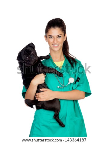 Brunette vet with a pug dog isolated on white background - stock photo