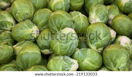 Brussels sprouts background. - stock photo