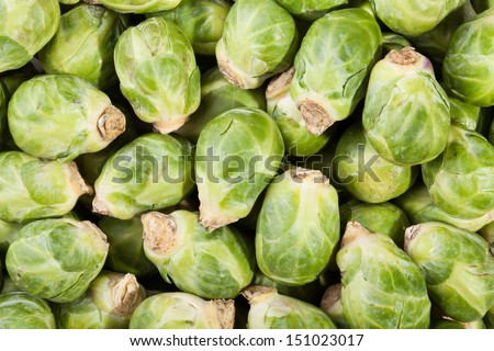 brussels sprouts many closeup background - stock photo
