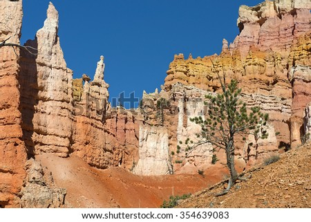 Bryce Canyon National Park, nature reserve  in southwestern Utah in the United States, unique geologic formation and spire-shaped rock formations - stock photo