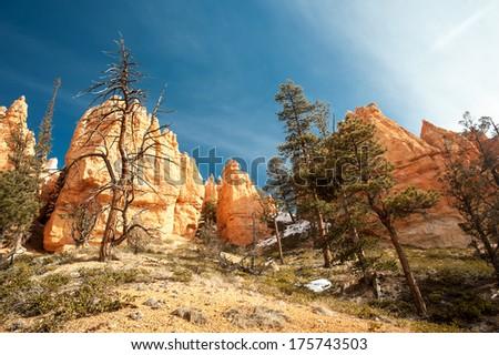 Bryce Canyon National Park, USA - stock photo