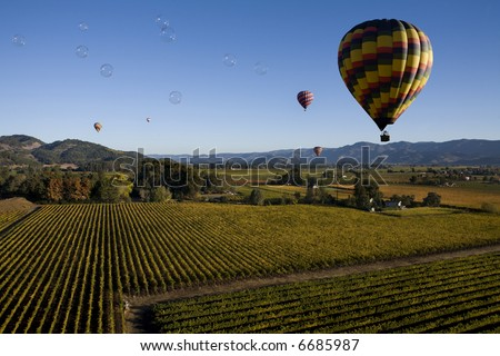 Bubbles over Vineyards - stock photo