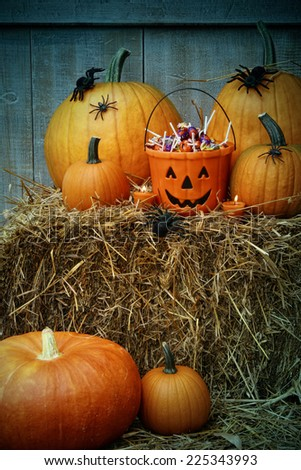 Bucket filled with Halloween candy and pumpkins on hay - stock photo