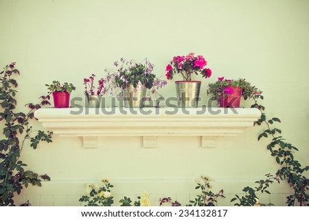 Buckets of flowers and Flower Pots in the garden - stock photo